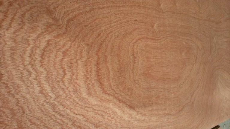 vân gỗ cắt ngang