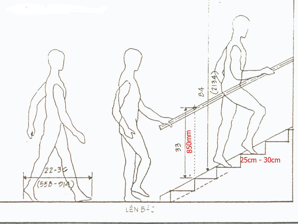Bậc cầu thang cao bao nhiêu là vừa đẹp?