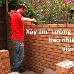 Bạn đã biết 1 mét vuông tường bao nhiêu viên gạch chưa?