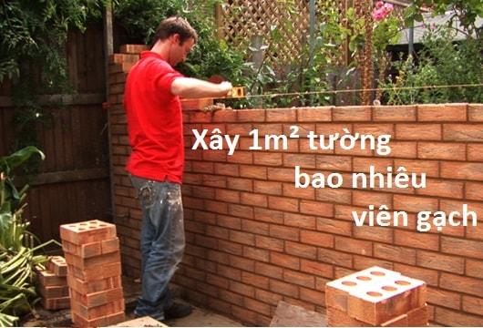 xay-1-met-vuong-tuong-bao-nhieu-vien-gach