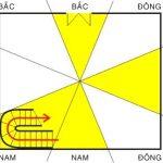Trung cung là gì? Các xác định trung cung chuẩn xác nhất