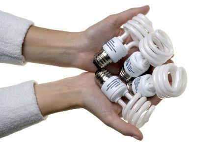 muôn hình vạn trạng bóng đèn tiết kiệm điện trên thị trường