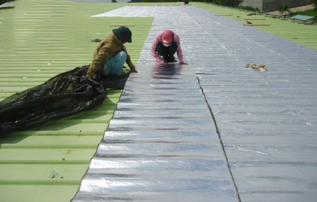 giấy dầu chống dột mái tôn